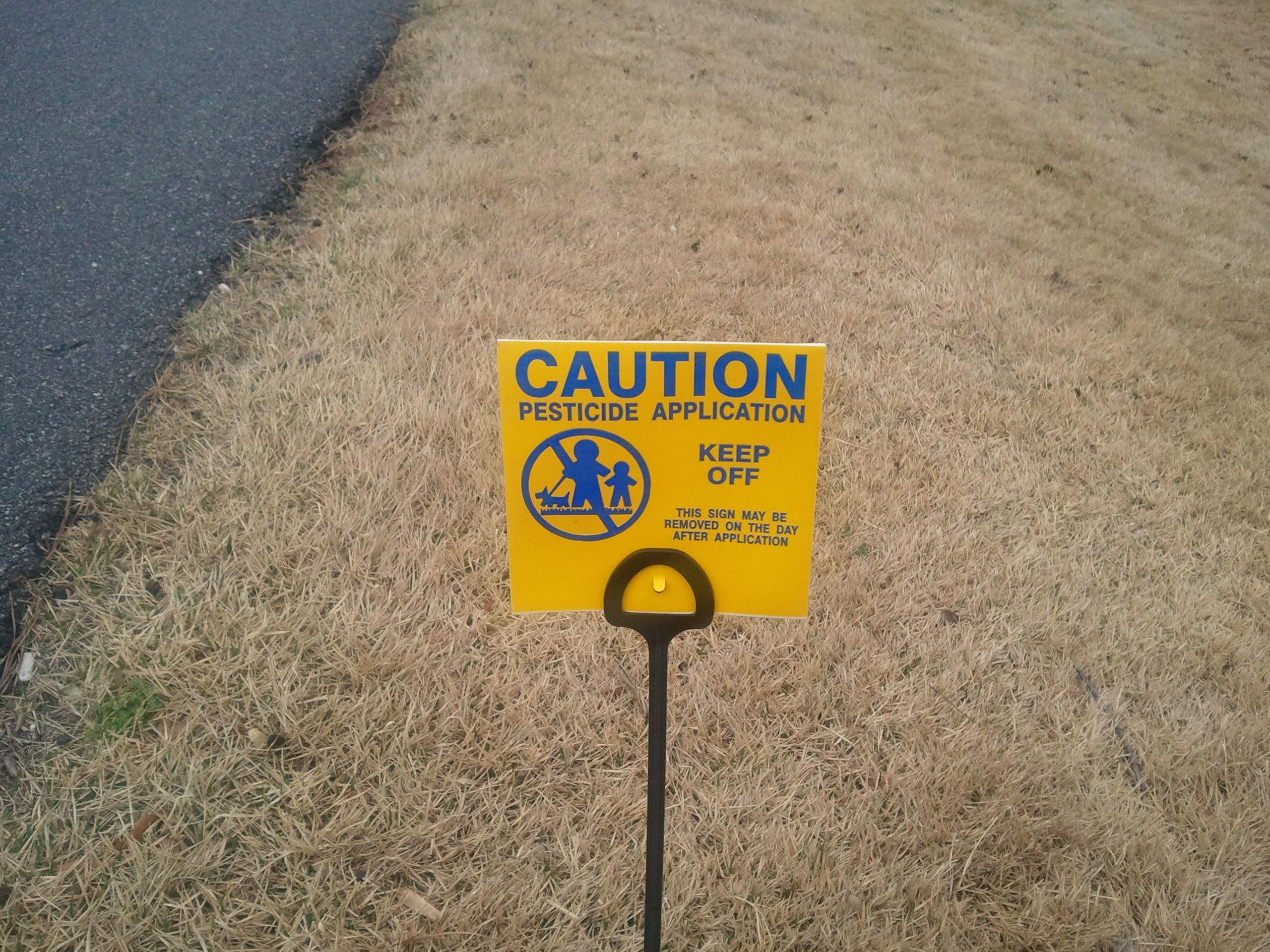 Got weeds pet safe alternatives for a pesticide free lawn by katelyn