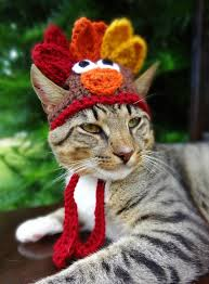 catthanks