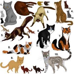 cat_fur_patterns__updated__by_insanitynothing-d25sebe