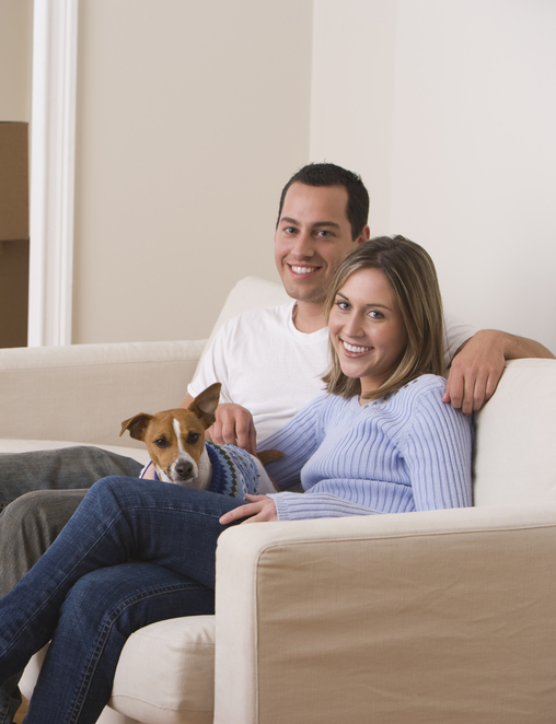How To Keep Your Home Clean With Multiple Pets