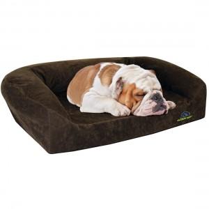 the 3 best pet beds